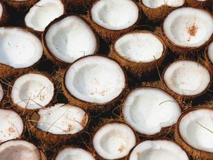 Coconut Oil for Pregnancy Stretch Marks: Does It Work?